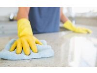 Domestic cleaning-Best price