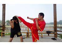 Kungfu training partner