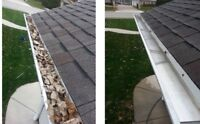 Gutter / eavestrough cleaning $150 flat rate! Same day service