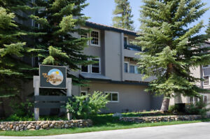 2 Bedrooms Luxury Vacation Rental Condo, Mammoth Lakes Californi