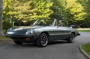Looking for 1977-1979 Alfa Romeo Spider - Good Body Condition