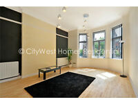 3 bedroom Victorian Conversion Belgravia / Chelsea / Victoria - 150m2 - repainted - new kitch /bath