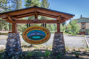 Vacation Rental Condo In Mammoth Lakes Unit 215 – Mammoth Lakes