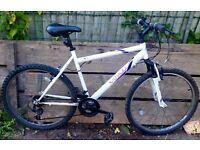 Used apollo women's mountain bike.