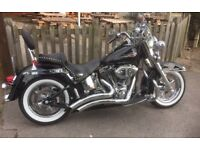 Stunning Harley Davidson softail classic 2006