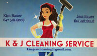 PROFESSIONAL CLEANING LADIES