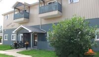 EXECUTIVE- BEAUTIFUL DOWNTOWN apartment--A MUST SEE! 863-8484