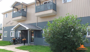 GREAT LOCATION, BEAUTIFUL LARGE APT, PETS ALLOWED GREAT PRICE