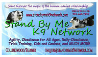 Kids and Dogs - Agility Classes
