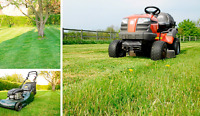 AFFORDABLE LAWNCUTTING/GRASS CUTTING/LAWNCARE
