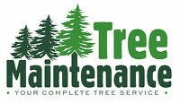 ***THE LAWN AND TREE MAINTENANCE EXPERTS. SAVE 15% NOW!!!***