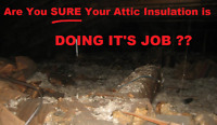 Attic insulation removal+ new insulation