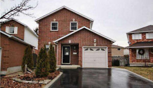 3+1 b 3.5 bathroom detached house in Hamilton mountain for rent