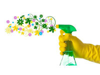 House cleaner, house keeper, pet care, family home, Cleaning Service