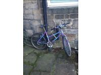 Purple Raleigh retro 3 gear bicycle
