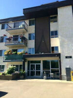 Beautiful 1 & 2 Bedroom DOWNTOWN. Available Immediately