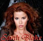 Sarah Blake Ebay Store