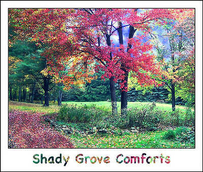 Shop Shady Grove