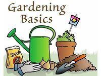 Looking for jobs - gardener & handyperson