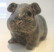 Guinea Pig Money Box