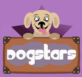 DogStars 4 Dog Walking, Day Care and Home Boarding.