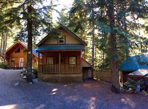 Beautiful Recreational Log Home in Sunshine Valley H103