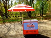 Custom Made Ice Cream Push Cart