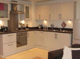 Furnished & spacious 2 bed flat in Birmingham City Centre - Masshouse Plaza