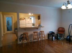 *AWESOME 4 bdr house, close to DOWNTOWN, 1 bus to UWO & FANSHAWE