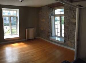 1 Bedroom available for July-August Sublet in Character Home