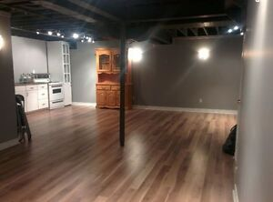 LUXURY/ SPACIOUS 1 BEDROOM BASEMENT APARTMENT FOR RENT