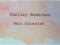 Mobile Hair Colourist- Stonehaven Area