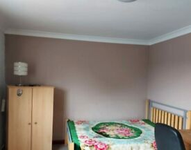 Double Room in a Nice Area