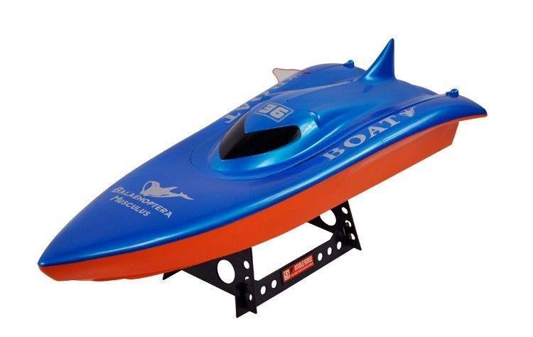 Balaenoptera Musculus RC Racing Boat