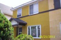 Leger Stucco, PARGING And Painting