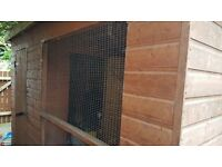 Dog kennel and run needs a bit of tlc
