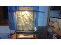 Vivarium for sale. Perfect starter kit. Complete with essential equipment and accessories