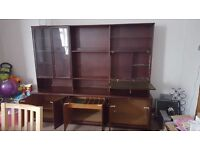 Large Storage and Display Cabinet