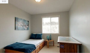 Two furnished rooms available for rent starting January 2017. Kitchener / Waterloo Kitchener Area image 6