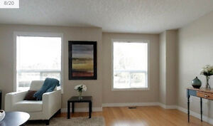 Two furnished rooms available for rent starting January 2017. Kitchener / Waterloo Kitchener Area image 5