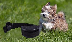 collier anti aboiement pour chien de 5 à 100 l bs neuf