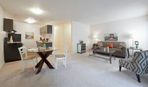EXECUTIVE STYLE SUITES IN CENTRAL NANAIMO