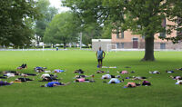 Free Yoga Practice in the Park