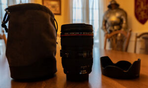 Canon 24-105 l is usm