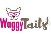 Professional Fully Insured Cat Sitter Perth & Surrounding Villages