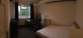 Large Double Room to rent near Turnpike Lane Station
