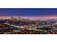 1 return ticket, London- Los Angeles, 1 May- 10 May