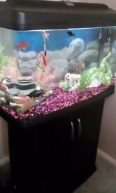 120 Ltr fish tank for sale