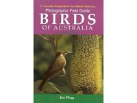 Photographic Field Guide: Birds of Australia Paperback by Jim Flegg