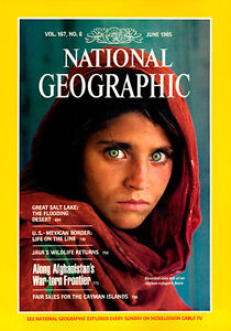 Collection of English National Geographic Magazines